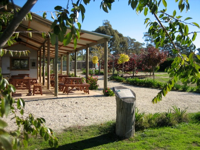 BBQ facilities and amazing views at Avenel Maze, great kids fun especially on school holidays